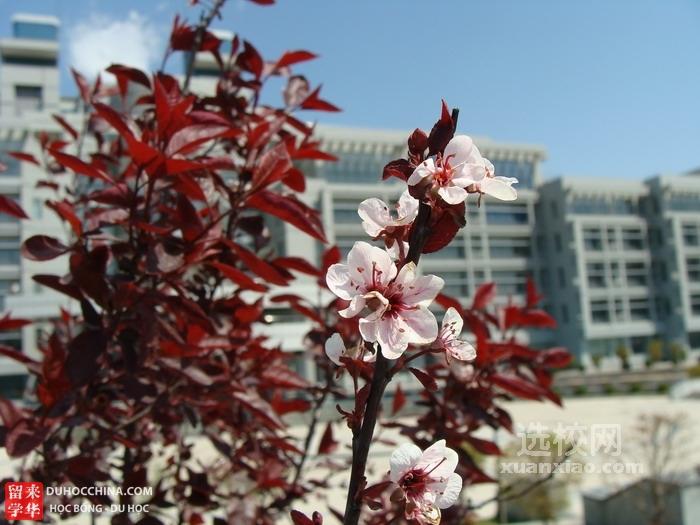 Đại học Công nghệ Liêu Ninh - Cẩm Châu - Trung Quốc