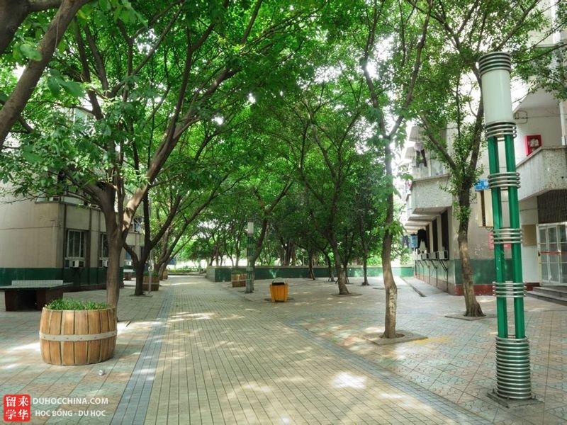 Đại học Giao thông Trùng Khánh - Trung Quốc