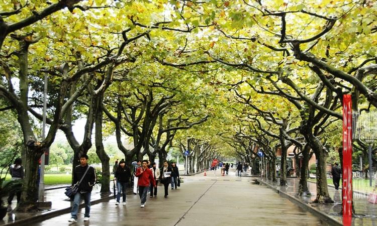 Đại học Sư phạm Thượng Hải - Trung Quốc
