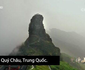 Dãy núi bảo tồn 2.000 động thực vật quý hiếm ở Trung Quốc
