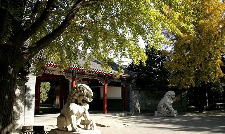 Đại học Thanh Hoa - Trung Quốc