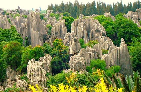 Gợi ý lịch trình du lịch Vân Nam (Trung Quốc) tự túc 10 ngày