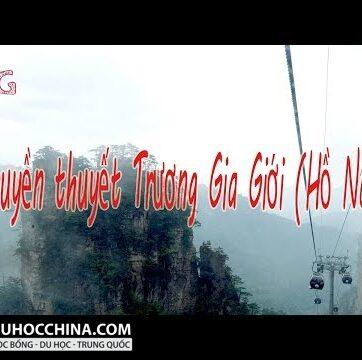 Hùng vĩ Trương Gia Giới - Những cột trụ trời ở Hồ Nam, Trung Quốc - Nguyên mẫu phim Avatar