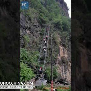 """""""Làng trên vách đá"""" ở Tứ Xuyên, Trung Quốc"""
