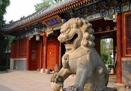 Peking University politics