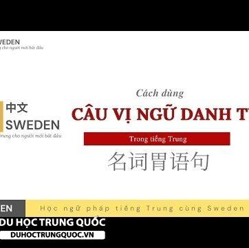CÂU VỊ NGỮ DANH TỪ trong tiếng Trung | 名词胃语句|Tự học Hán ngữ tiếng Trung