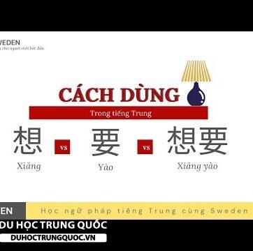 PHÂN BIỆT CÁCH DÙNG CỦA 想 - 要 - 想要 trong tiếng Trung | Xiǎng - yào - xiǎng yào|Tự học Hán ngữ